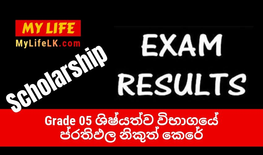 Grade 5 Scholarship Examination Result 2019