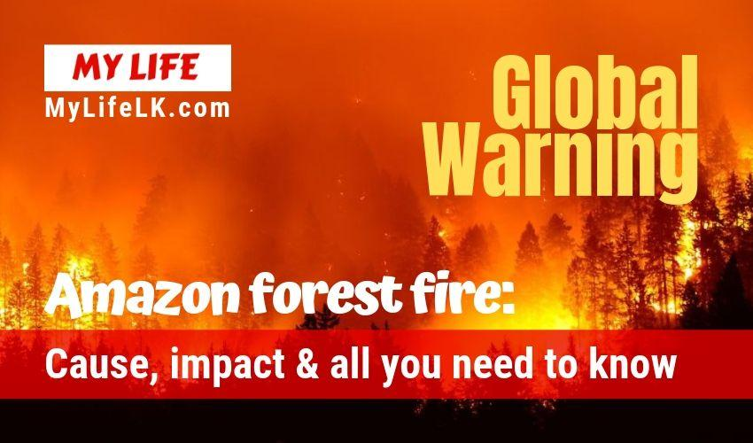 Amazon Rain Forest Fire - My Life
