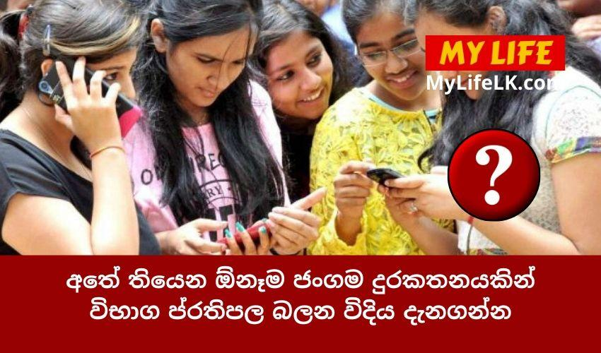 How to Check an Exam Result Using a Mobile Phone? - My Life