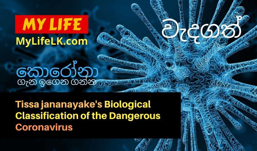 Biological Explanation About the Coronavirus - My Life