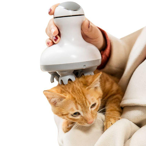(Global Shop) Electric Automatic Pet Cat 3D Head Massager - My Life