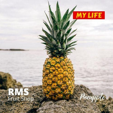 (Retail & Wholesale) Sri Lanka Best Pineapple by RMS Fruit Shop - RMS Fruit Shop - mylife-sa.myshopify.com