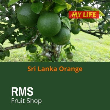 (Retail & Wholesale) Best Sweet Orange by RMS Fruit Shop