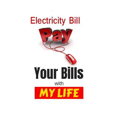 Make a Payment - Electricity