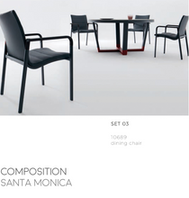 Load image into Gallery viewer, Santa Monica Dining Arm Chair-Maison Bertet Online