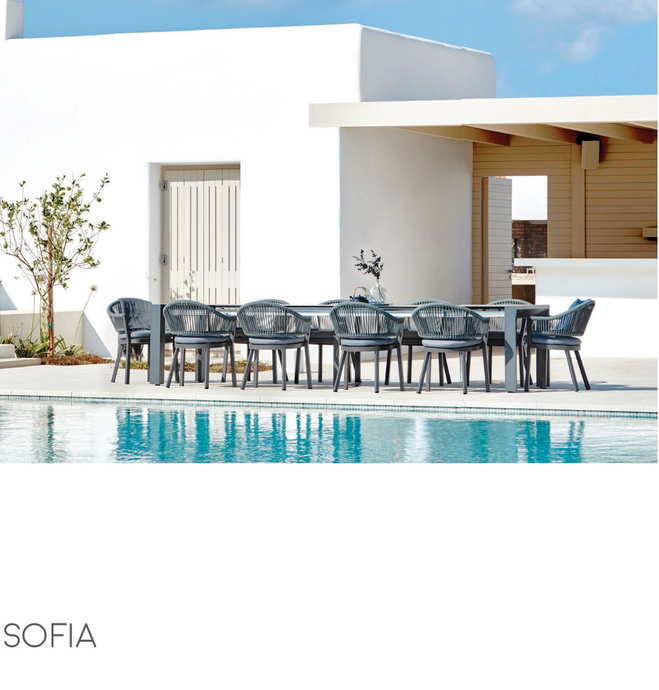 Sofia Dining Arm Chair-Maison Bertet Online