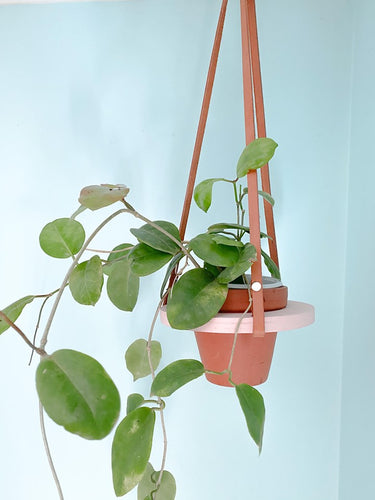 Orbit Hanging Planter (pink)