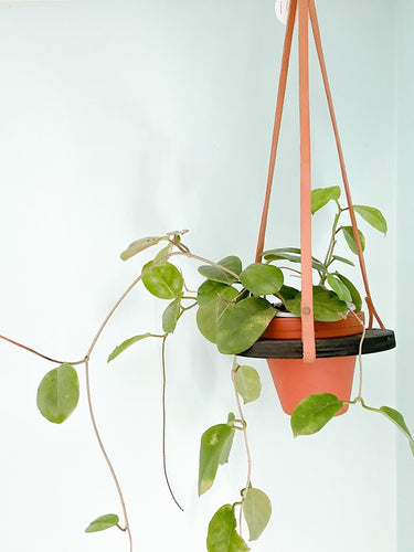 Orbit Hanging planter (black/tan)