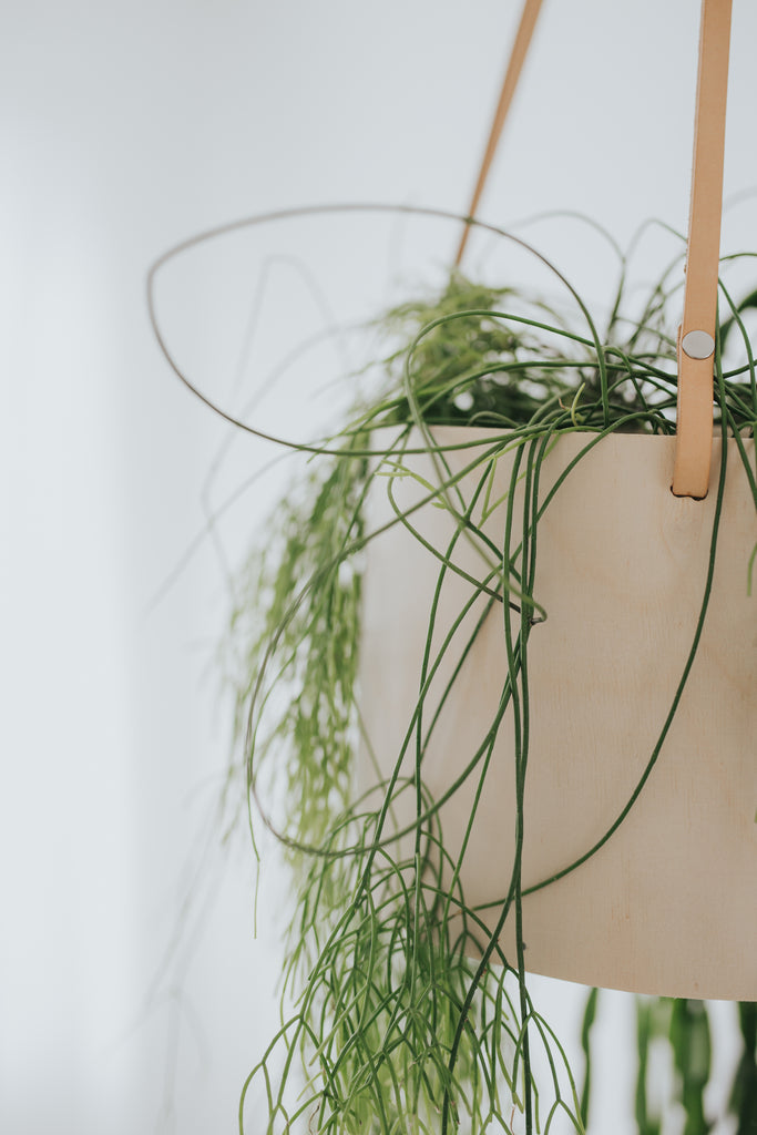 Raw Grain Hanging Planter