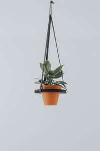 Orbit Hanging Planter (black)