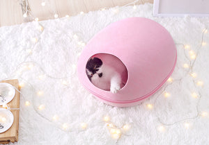 Cat Shell House