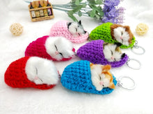 Sleeping Kitty Keychain
