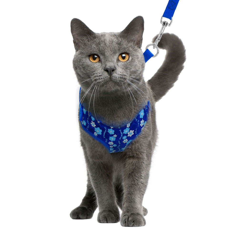 Lily Cat Harness And Leash