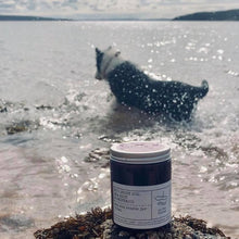 Load image into Gallery viewer, No 1: Scout Dog. Sea Salt and Drift Wood, Luxury Candle Jar.
