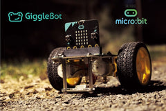 GiggleBot Light Follower - on Gravel