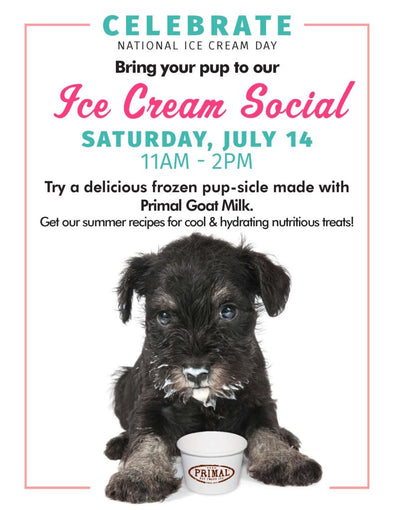 You're Invited to An Ice Cream PAWTY!