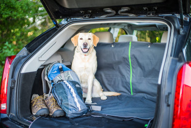 Get Prepared for Summer Travel – Kurgo Pet Travel Safety Tips