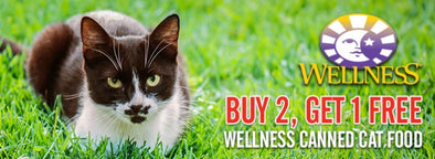 JUNE OFFER ON WELLNESS CANS