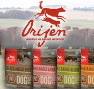 OCTOBER PRODUCT OF THE MONTH! BUY ORIJEN KIBBLE, GET A FREE BAG OF ORIJEN TREATS!