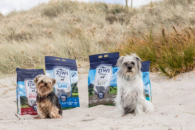 ZIWI ETHICALLY FARMED DOG & CAT FOOD FROM NEW ZEALAND