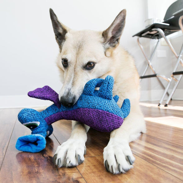 Kong Blue Woozles Dog Toy