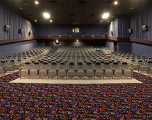 "Load image into Gallery viewer, ""French Quarter"" Theme Theater Carpet"