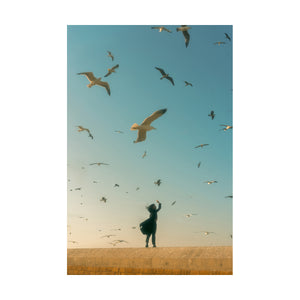 The Seagulls in Essaouira by Sophie Cheung - photography print