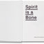 Spirit is a Bone <br> Oliver Chanarin & Adam Broomberg - MACK