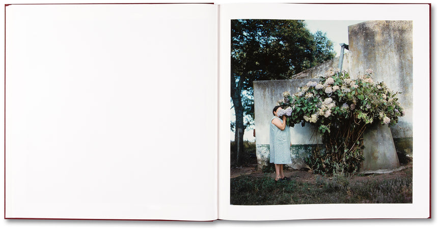 The Adventures of Guille and Belinda and The Enigmatic Meaning of Their Dreams <br> Alessandra Sanguinetti