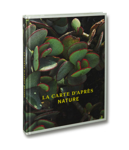 La Carte d'après nature <br> Thomas Demand - MACK