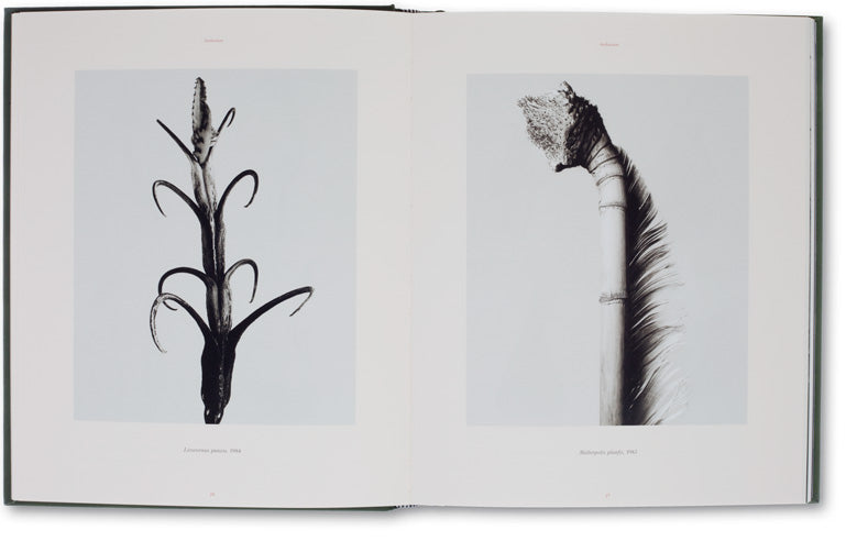 The Photography of Nature & The Nature of Photography <br> Joan Fontcuberta - MACK