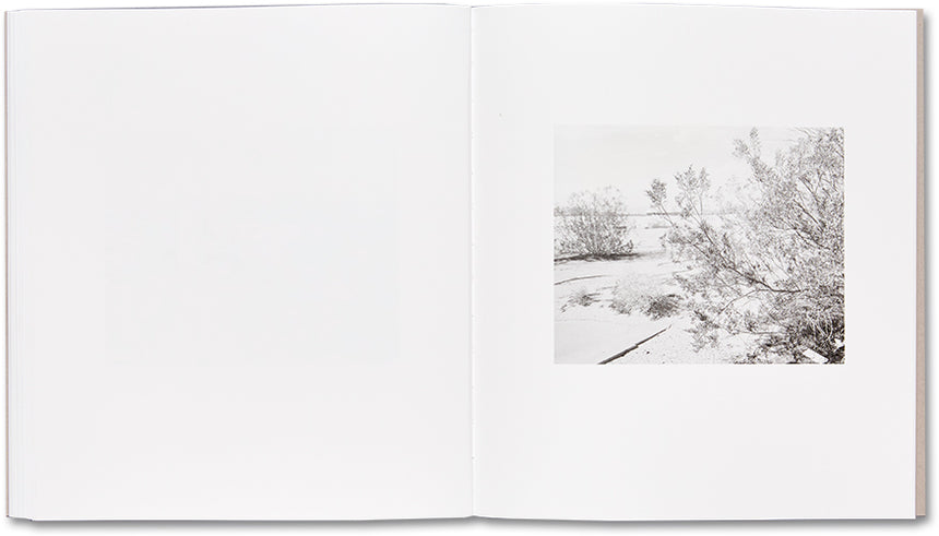 Domesticated Land <br> Susan Lipper - MACK