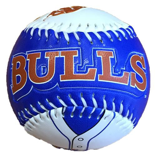 Durham Bulls Display Baseball Bull City