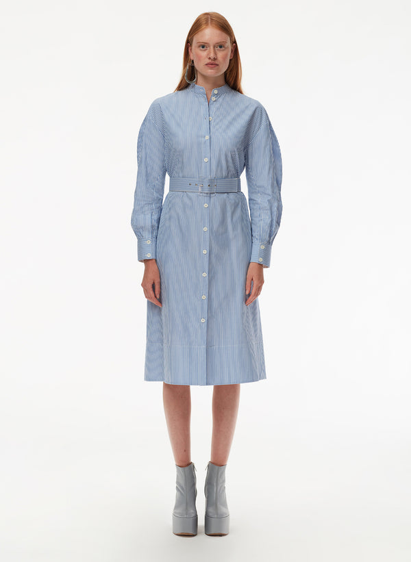 Striped Shirting Shirtdress with Belt