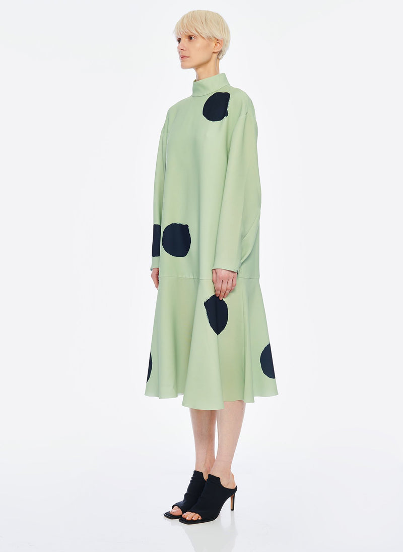 Polka Dot Dress Pistachio / Black Multi-2