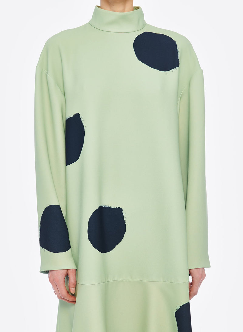Polka Dot Dress Pistachio / Black Multi-5