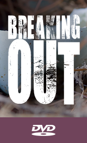 T.D. Jakes - Breaking Out DVD