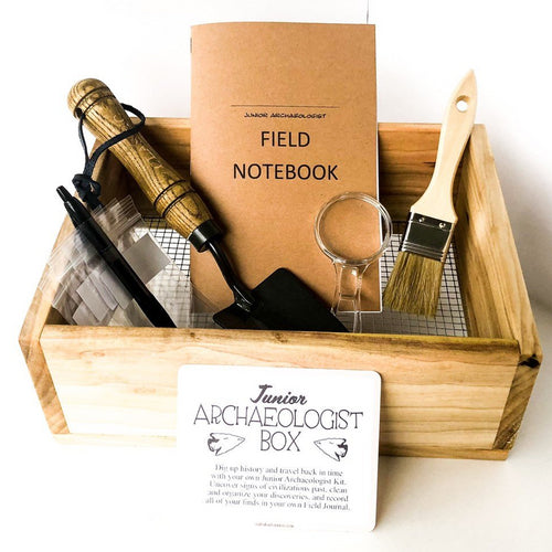 Junior Archaeologist Adventure Box