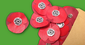 Lot de 10 cocardes-coquelicots