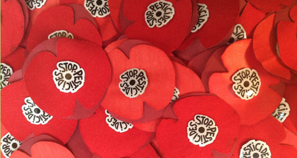 Lot de 300 cocardes-coquelicots