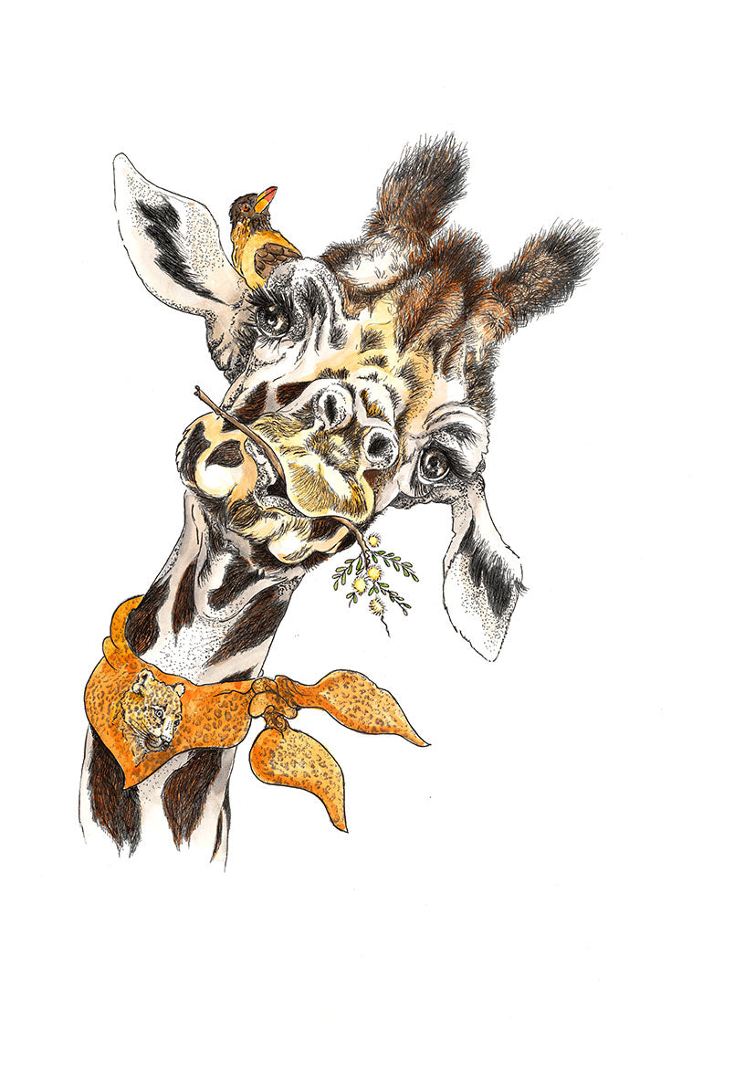 At Heart Greetings Cards – Giraffe Portraits (pack of 6)