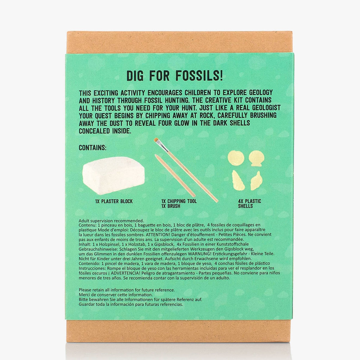 Instant Geologist Fossil Excavation Kit