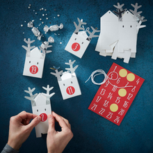 Load image into Gallery viewer, DIY Advent Calendar Boxes - Silver Reindeer