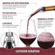 Load image into Gallery viewer, 2-in-1 Wine Aerator and Pourer