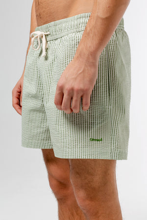 vertical-stripes-green