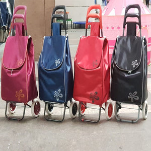 Shopping Trolley with Multi Colors (1113)