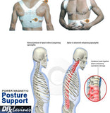 Dr Levines Power Magnetic Posture Support