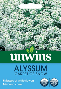 Unwins Alyssum Carpet Of Snow