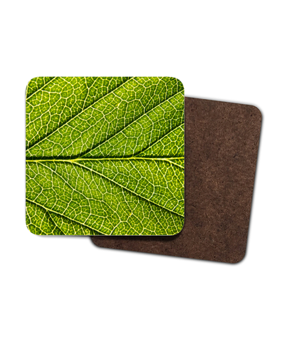 4 Pack of Hardboard Coasters - Macro Cherry Leaf