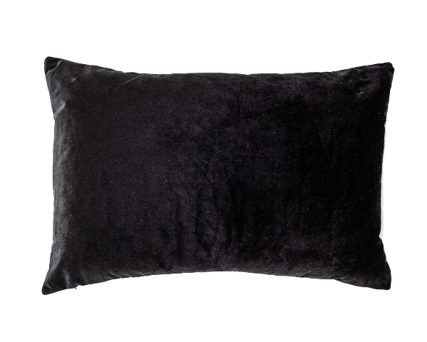 Coco Velvet Feather Rectangle Cushions Black Set of 2-Bibilo